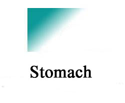 stomach, ulcers
